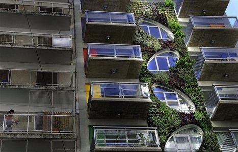 Jardines verticales para una ciudad verde - Lanacion.com (Argentina) | joss amezcua | Scoop.it