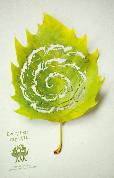Leaf Art | Truth, Beauty, Love | Scoop.it