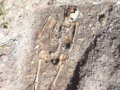 ALLEMAGNE : Skelette auf Supermarkt-Gelände | World Neolithic | Scoop.it
