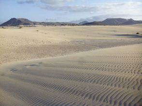 What are the best family trips in Fuerteventura? | Hotels in Spain | Scoop.it