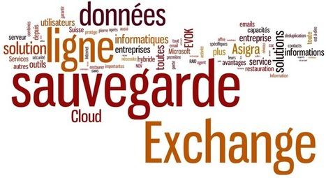 Evok Cloud Services propose un service de sauvegarde en ligne... | Cloud Services & Cloud Computing | Scoop.it
