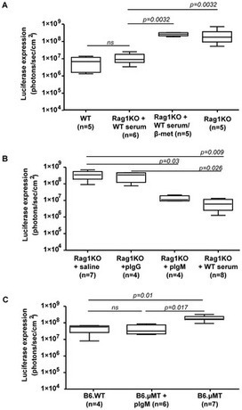 PLOS ONE: Innate Functions of Immunoglobulin M Lessen Liver Gene Transfer with Helper-Dependent Adenovirus | TALE effector Design and Delivery | Scoop.it