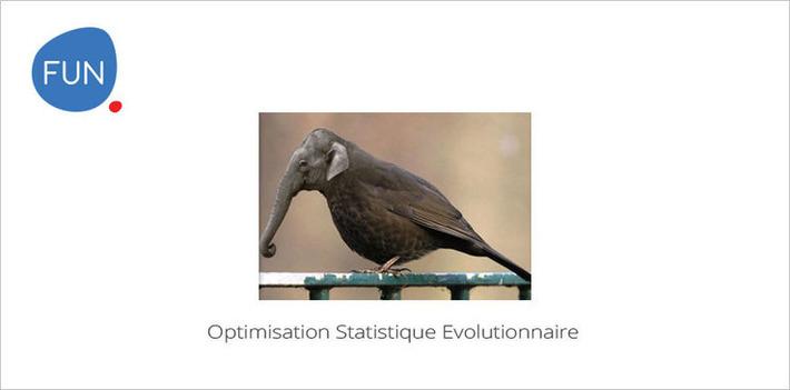 Le MOOC Optimisation Stochastique Évolutionnaire commence aujourd'hui | MOOC Francophone | Scoop.it