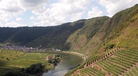 The Top 25 Dry German Rieslings of 2016 | Vinideal - A la recherche de votre Vin Idéal ! www.vinideal.com | Scoop.it