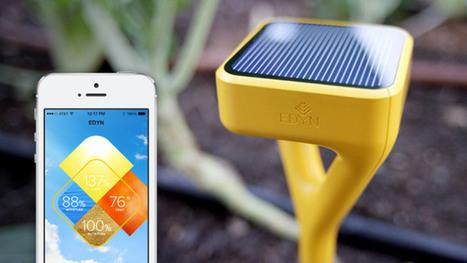 Smart Garden Sensor Edyn Moves Past Kickstarter Goals, Eyes Android | TechCrunch | Organic Farming | Scoop.it