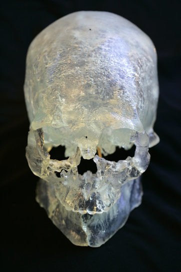 New DNA Results Show Kennewick Man Was Native American | Southmoore AP United States History | Scoop.it