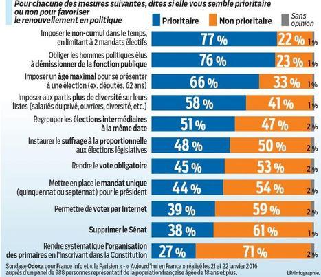 Renouvellement de la vie politique : ce que veulent les Français | Le vote blanc | Scoop.it