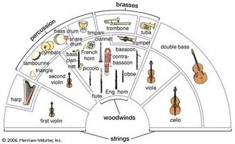 The Journey: Introduction to the String Family Part 1 - Violin, Viola, and String Basics - Lesson 4 | Infographics for English class | Scoop.it