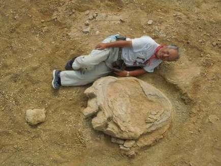 Giant dinosaur footprint discovered in Mongolia desert | Fragments of Science | Scoop.it