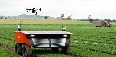 The future of agriculture | Agriculture durable | Scoop.it