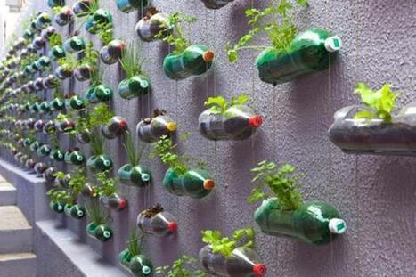 Aprenda cómo hacer un jardín vertical con botellas PET. | Interesantes wow | Scoop.it