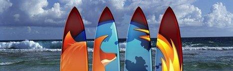 Firefox – Il est possible de contourner la protection contre les installations silencieuses de plugins | Libertés Numériques | Scoop.it