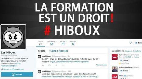 Compte personnel de formation: la révolte des Hiboux   Numérique & pédagogie   Scoop.it