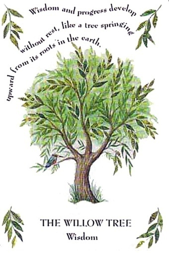 April 15th - May 12th - The Willow Tree   The New Light™   Scoop.it