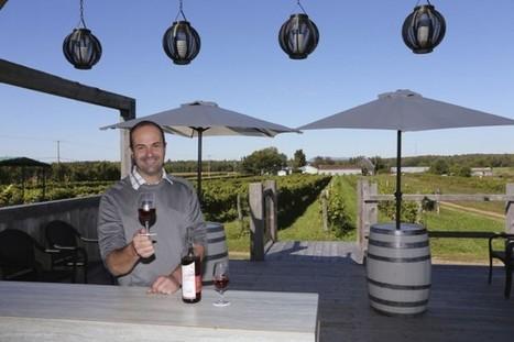 Québec : Optimisme prudent des vignerons | Le vin quotidien | Scoop.it