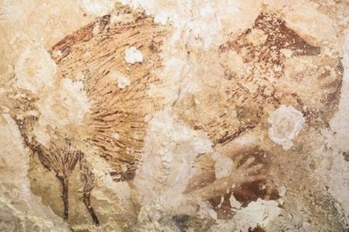 Des pochoirs vieux de 40 000 ans découverts en Indonésie | Le Monde | Kiosque du monde : A la une | Scoop.it