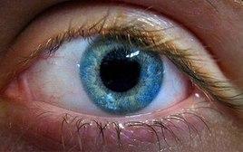 Droga em testes pode dar a cegos capacidade de 'ver' luz - Ciência - iG | Biologia | Scoop.it