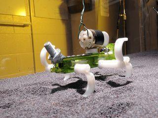 Un robot-lézard en terrain mouvant - Science Actualités.fr   Robotique   Scoop.it