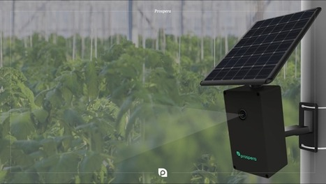 This robot has 'eyes' that can see dying plants before farmers can | Business Insider | Cultibotics | Scoop.it