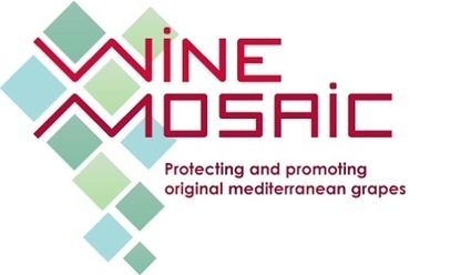 A la découverte d'un blog méconnu: #WineintheCities #WitC | Wine and the City - www.wineandthecity.fr | Scoop.it