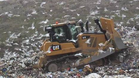 One man's trash is another man's big data | Implications of Big Data | Scoop.it