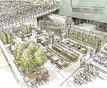 First-ever edible garden in a major American sports facility | Sports Facility Management | Scoop.it
