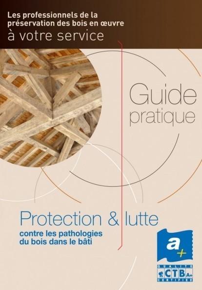 Guide pratique pour tout savoir sur les ennemis du bois | Immobilier | Scoop.it