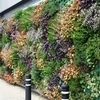 LIVING WALL FLOURISHES ON WAITROSE'S GREENEST STORE | Vertical Farm - Food Factory | Scoop.it