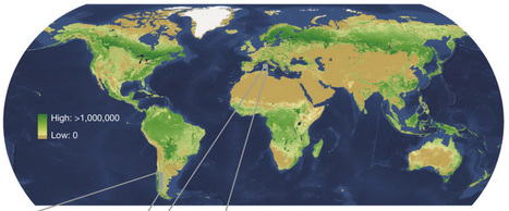 The most complete global map of forests available yet - Geoawesomeness | STEM Connections | Scoop.it