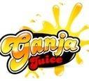 Tobacco Flavored E Liquid | Ganja Juice | Scoop.it