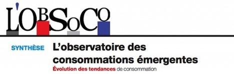 83% des Français préfèrent l'usage à la possession | Socio-green | Scoop.it