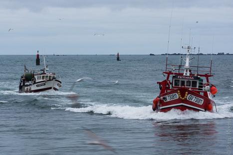 Bretagne - Finistère :  retour au port (3 photos) | photo en Bretagne - Finistère | Scoop.it