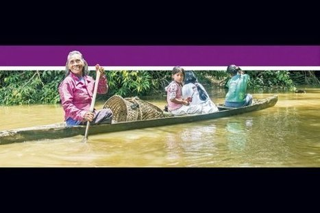 Alarma por altos niveles de mercurio en etnias amazónicas | Agua | Scoop.it