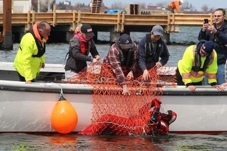 Safety drills precede opening of season | Nova Scotia Fishing | Scoop.it