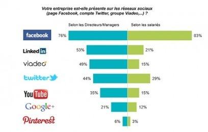 Usages et impacts du digital et des réseaux sociaux dans l'entreprise : Le défi de la transformation digitale | News des Réseaux Sociaux | Scoop.it