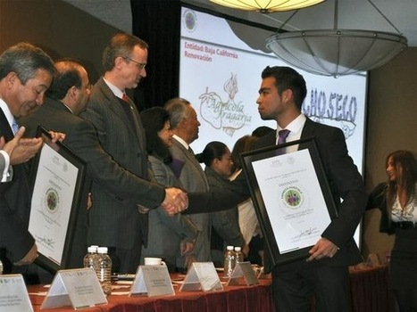Narcogobierno De Peña Nieto Premia A Transnacional #Monsanto   democracia mx   Scoop.it