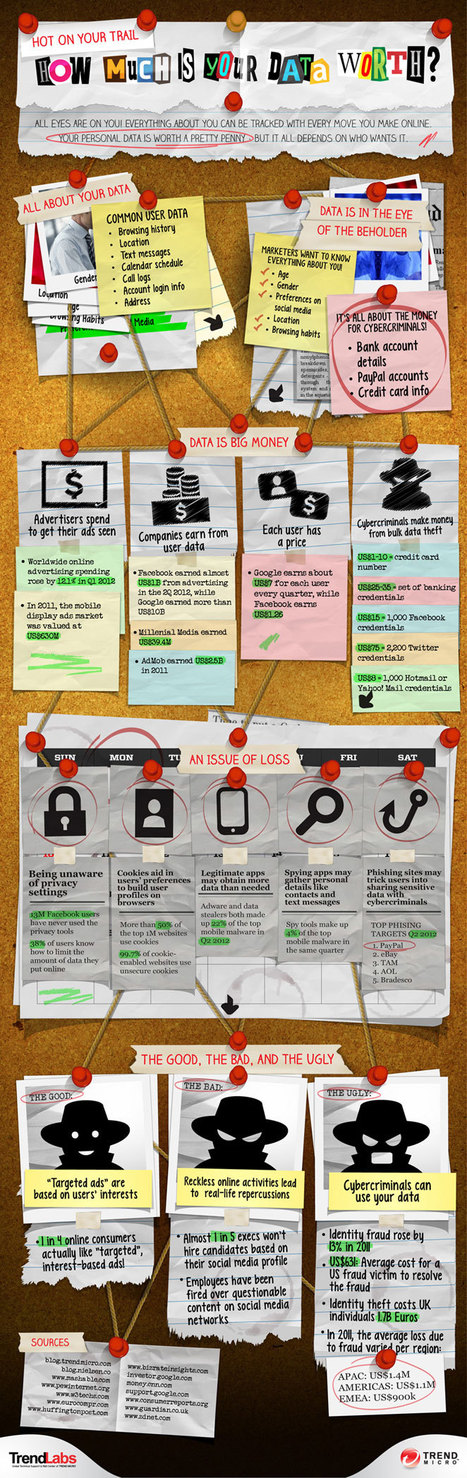 INFOGRAPHIC: How much is your data worth? | Data & Web Ergonomy - Usability | Scoop.it