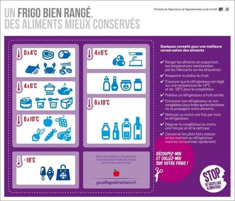 Infographie - Un frigo bien rangé, des aliments mieux conservés | Alim'agri | SemioFood | Scoop.it