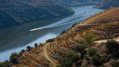 The Douro Valley on the BBC | The Douro Index | Scoop.it