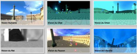 Una iniciativa de tecnología en 3D muestra cómo ven los animales | EDUCANDO | Scoop.it