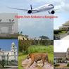 Domestic Flight Routes in India - Flywdius