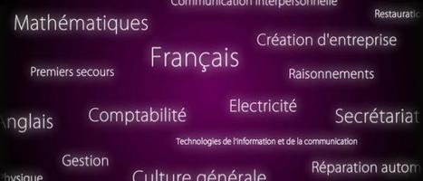 La Web TV de l'Afpa | Ressources d'autoformation dans tous les domaines du savoir  : veille AddnB | Scoop.it