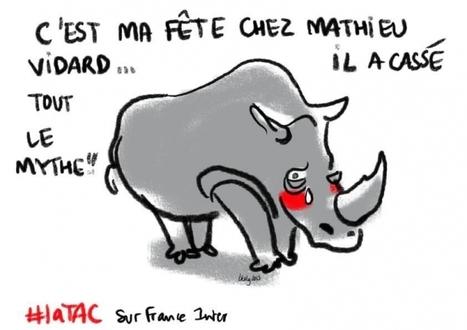 Les feux de l'amour animal / France Inter   EntomoScience   Scoop.it