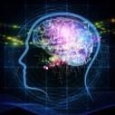 La organización neuronal y la ignorancia sistémica | Neurociencias | Scoop.it