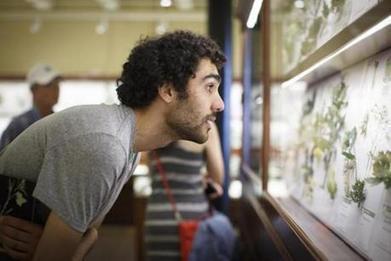 Harvard's glass flowers return - The Boston Globe | enjoy yourself | Scoop.it