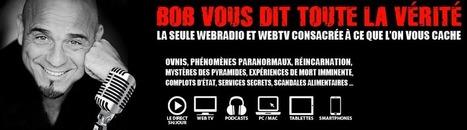Bob Vous Dit Toute La Vérité - Sébastien DUFOURCQ | Un univers de possibles... | Scoop.it