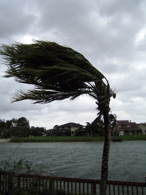 Are You Prepared for a Windstorm? | Home Insurance | Scoop.it