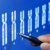How Genetic Siblings Can Look So Very Different : DNews | Science and Biotechnology | Scoop.it