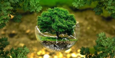 L'économie verte en Auvergne-Rhône-Alpes: un secteur qui recrute | Économie de proximité | Scoop.it
