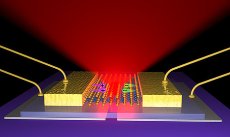 Scientists build thinnest-possible LEDs to be stronger, more energy efficient | Daily Magazine | Scoop.it